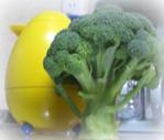 果菜彩の巨大ブロッコリー|MieBiz,三重,派遣,正社員,求人